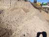 немытый песок 5 букв сканворд