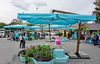 Уличные зонты на боковой и центральной опоре
